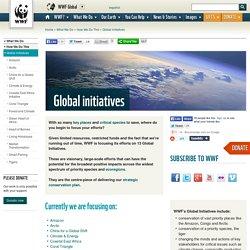 Global Initiatives