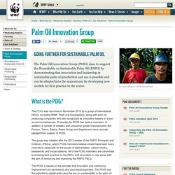 Palm Oil Innovation Group
