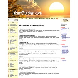 www.islamguiden.com