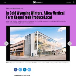 In Cold Wyoming Winters, A New Vertical Farm Keeps Fresh Produce Local