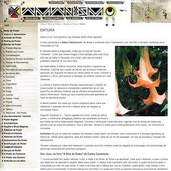 xamanismo.com.br