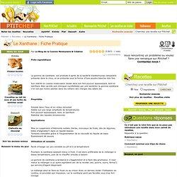 Recette Le Xanthane : Fiche Pratique par Le Blog de la Cuisine Moléculaire & ...
