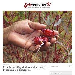 Don Trino, Xayakalan y el Concejo Indígena de Gobierno