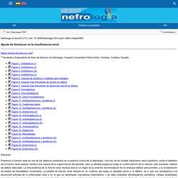 es-publicacion-nefrologia-articulo-ajuste-farmacos-insuficiencia-renal-XX342164212000297#2.2