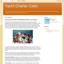 Yacht Charter Cabo: Amazing Tours Not To Be Missed While in Las Cabos