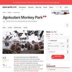 Yamanouchi Travel: Jigokudani Monkey Park (Snow Monkeys)