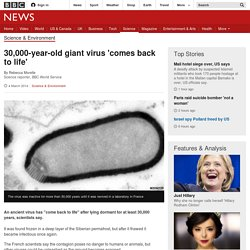 News - 30,000-year-old giant virus 'comes back to life'