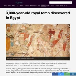 3,000-year-old royal tomb discovered in Egypt