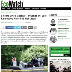 5 Years Since Massive Tar Sands Oil Spill, Kalamazoo River Still Not Clean