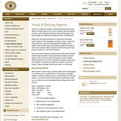 Yeast & Raising Agents