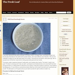 Wild Yeast Sourdough Starter
