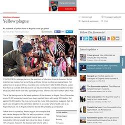 Yellow plague