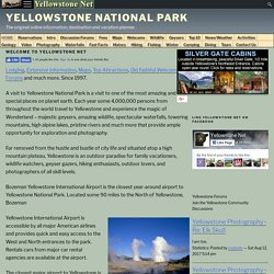 Yellowstone Net -- Yellowstone National Park Lodging, Hotel, Wildlife Information and More