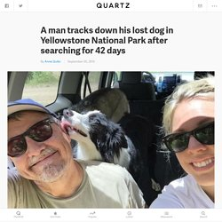 A man tracks down his lost dog in Yellowstone National Park after searching for 42 days