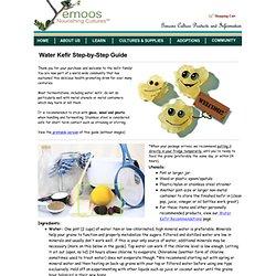 Water Kefir Guide - 2 TBS