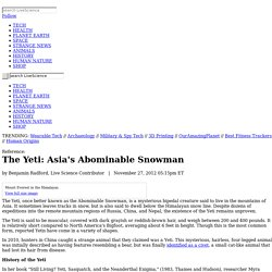 The Yeti: Asia's Abominable Snowman