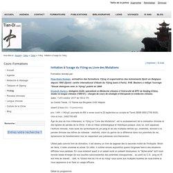 YiJing : Initiation à l'usage du YiJing
