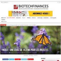 Ynsect : une levée de 14,2 M€ pour les insectes