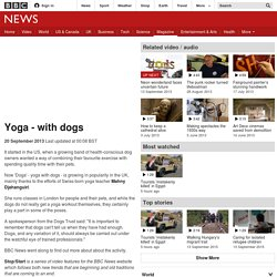 Yoga - with dogs