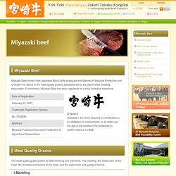 Miyazaki Beef - Yori Yoki Miyazakigyu Zukuri Taisaku Kyogikai ~YoriyokiMiyazakiBeef Council~