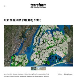 New York City (Steady) State — Terreform