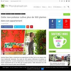 Cette new-yorkaise cultive plus de 500 plantes dans son appartement