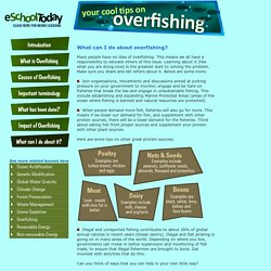 Tips on what young people can do about overfishing