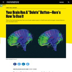 "Your Brain Has A ""Delete"" Button"
