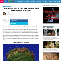 Your Brain Has A DELETE Button And Here's How To Use It!