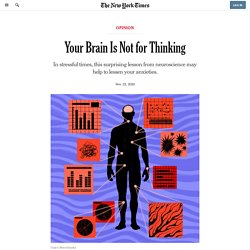 Your Brain Is Not for Thinking