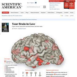 Your Brain in Love