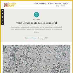 Your Cervical Mucus Is Beautiful