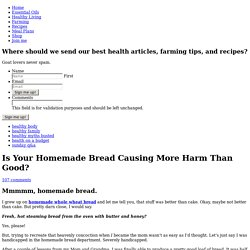 Is Your Homemade Bread Causing More Harm Than Good?