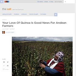 Your Love Of Quinoa Is Good News For Andean Farmers