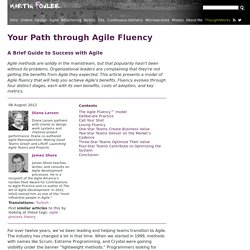 Your Path through Agile Fluency
