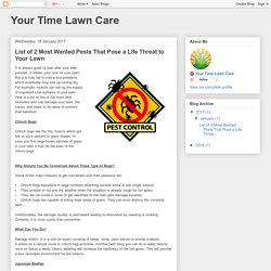 Your Time Lawn Care: List of 2 Most Wanted Pests That Pose a Life Threat to Your Lawn