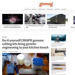 Do-it-yourself CRISPR genome editing kits bring genetic engineering to your kitchen bench