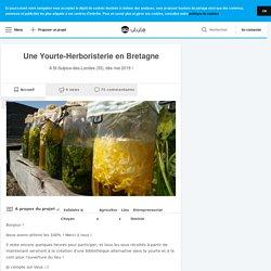 Une Yourte-Herboristerie en Bretagne