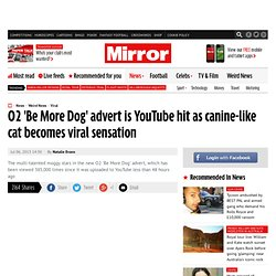 O2 'Be More Dog' advert is YouTube hit as canine-like cat becomes viral sensation