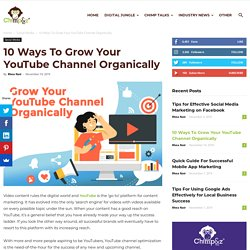 10 Ways To Grow Your YouTube Channel Organically - Chimp&z Blog
