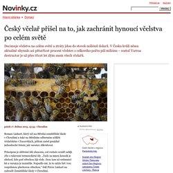 Český včelař přišel na to, jak zachránit hynoucí včelstva po celém světě– Novinky.cz