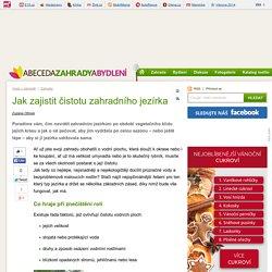 Jak zajistit čistotu zahradního jezírka – Abecedazahrady.cz