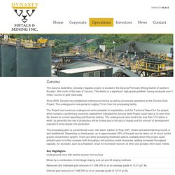 Dynasty Metals and Mining Inc.