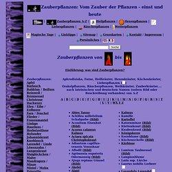 Zauberpflanzen von A-Z Küchenkräuter, Heilpflanzen, Liebespflanzen Räucherpflanzen, Hexenkräuter, Hexenpflanzen Weihkräuter Farne