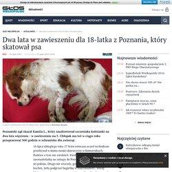 23 VII 2015: Dwa lata w zawieszeniu dla 18-latka z Poznania, który skatował psa - Dzienniklodzki.pl