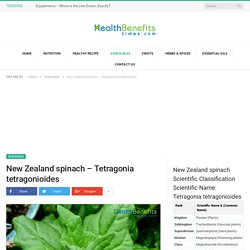 New Zealand spinach, Health Benefits and Nutritional Value