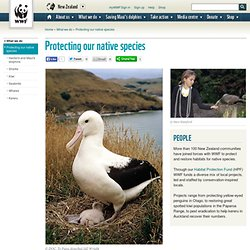 WWF New Zealand - Protecting our native species