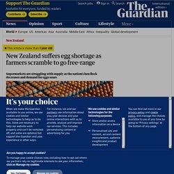 New Zealand suffers egg shortage as farmers scramble to go free-range