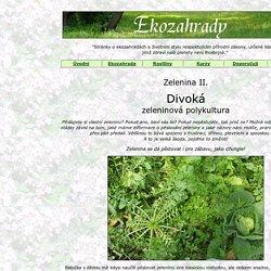 Zeleninová polykultura