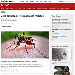 Zika outbreak: The mosquito menace